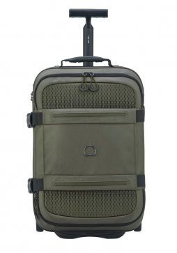 Delsey Montsouris 55cm 2-Wheel Suitcase in Cactus