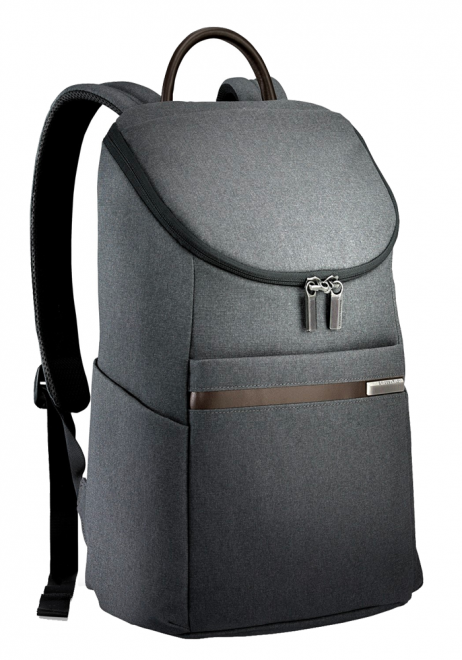 Side View of a Small Grey Briggs & Riley Kinize Street Backpack